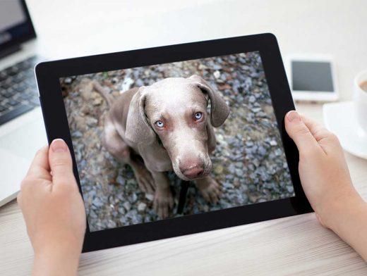 iPad In Hands PSD Mockup